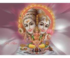 Best Business Problem Solution Astrologer IN INDORE +91-75278-88849